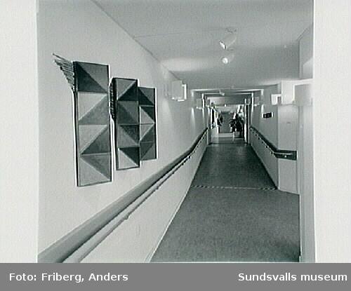 """Anita Wohléns offentliga utsmyckning """"Jord, luft och tidsrymd"""", akryl på trästomme, Alnö servicehus."""
