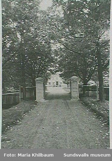 """Infarten till """"Haga slott"""" (Villa Wallerstedt) Allègatan."""