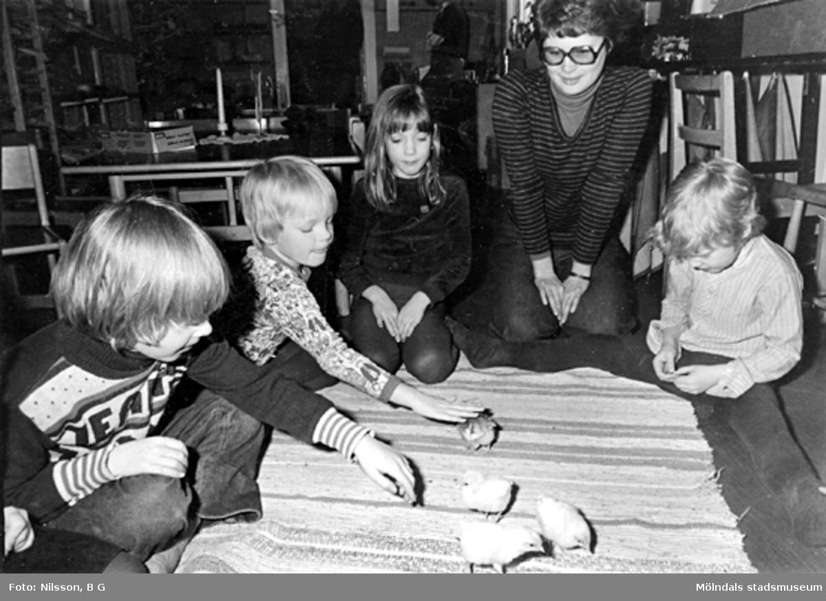 Några barn och en fröken som klappar kycklingar. Holtermanska daghemmet 1973.