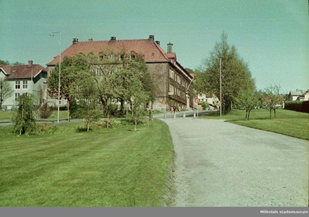 Till vänster skymtar Trädgårdsskolan i ljusgrå kulör.