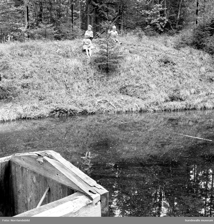 Farligt vattenhål vid Kubikenborg.