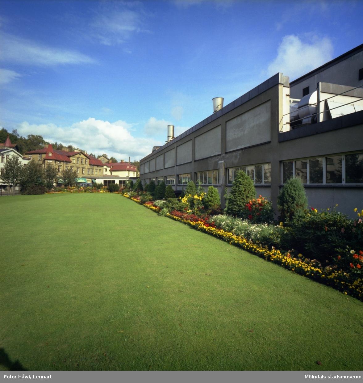 Del av Papyrus park i Mölndal, 16/9 1966. I bakgrunden ses bebyggelse vid Kvarnbygatan.
