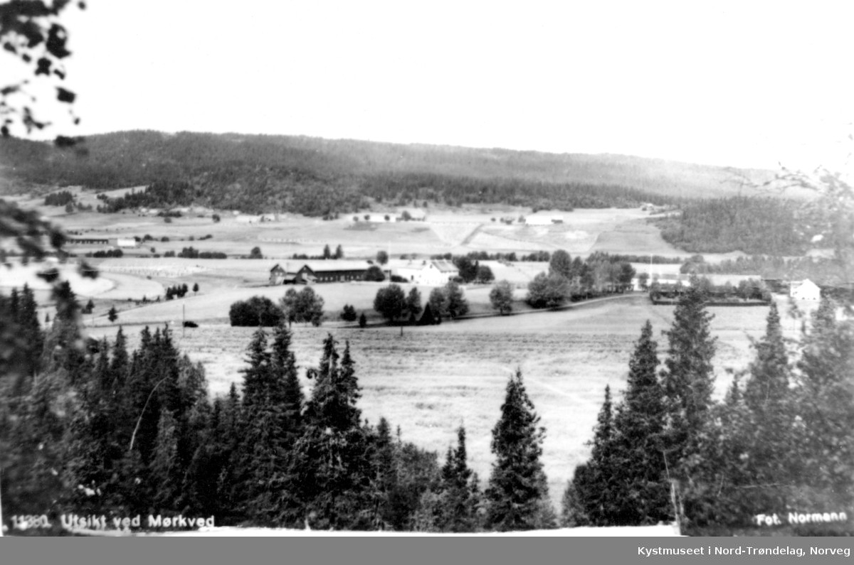 Mørkved i Høylandet kommune