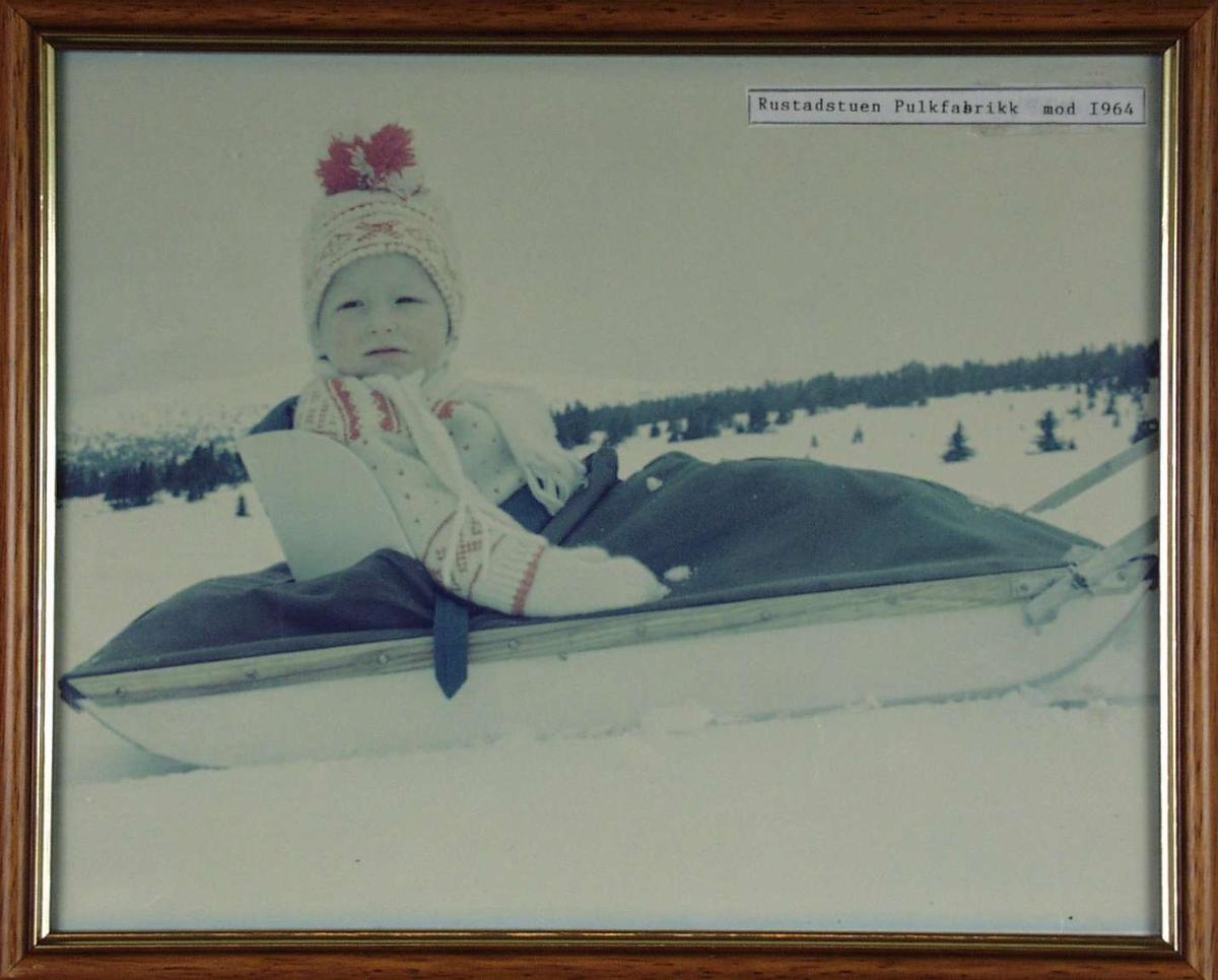 En pike i en pulk på skitur.