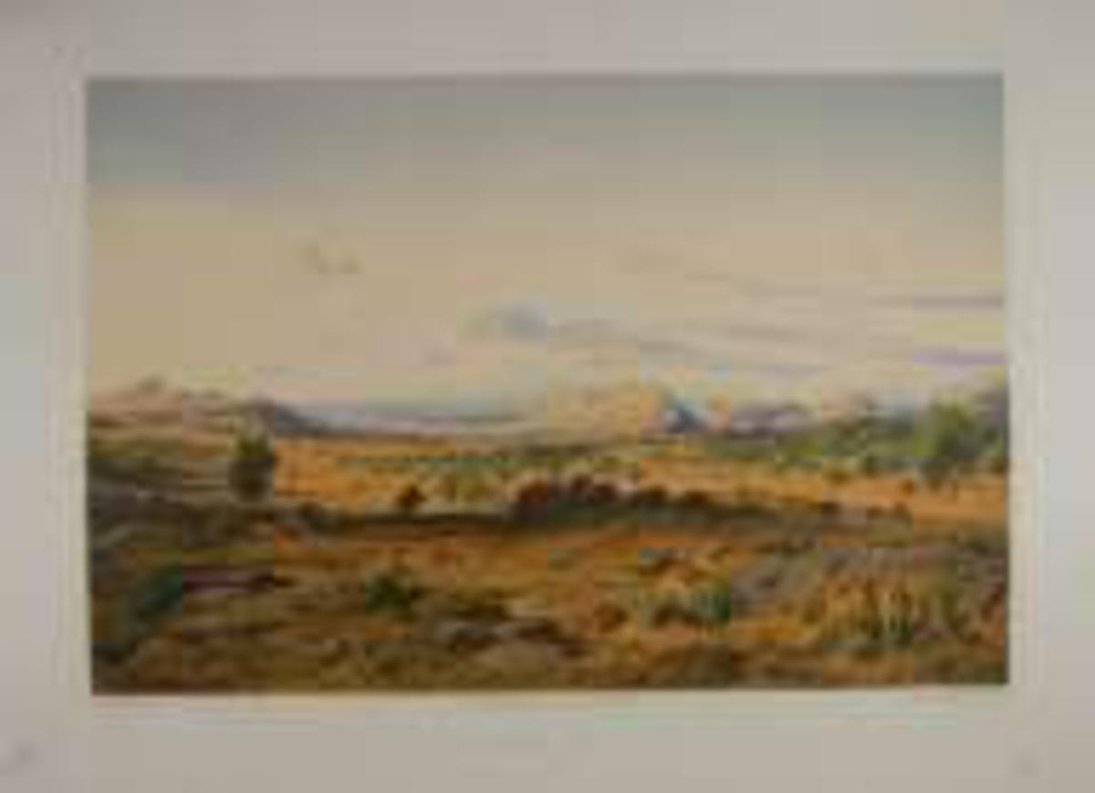 Landskap med sletter i forgrunnen, fjell og sjø i bakgrunnen.