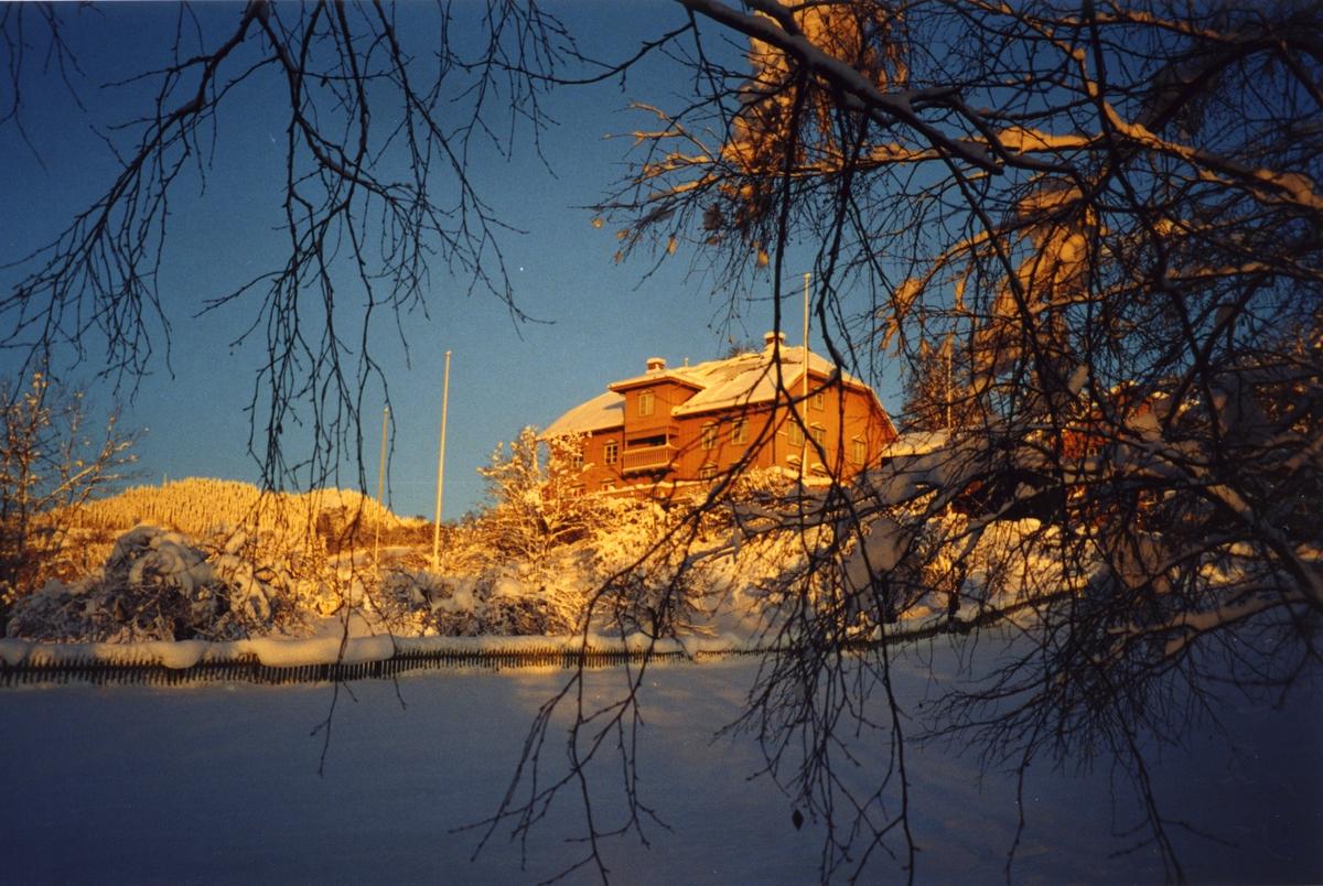 DOK: 2001/02, Aulestad, vinter,