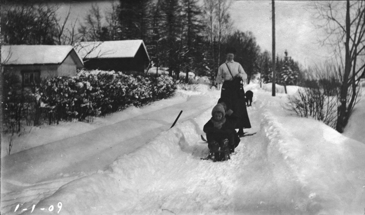Voksen, barn, kjelke, sne, bolighus, uthus, hekk