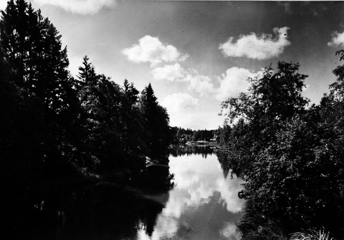 Fjellhamar-elva.