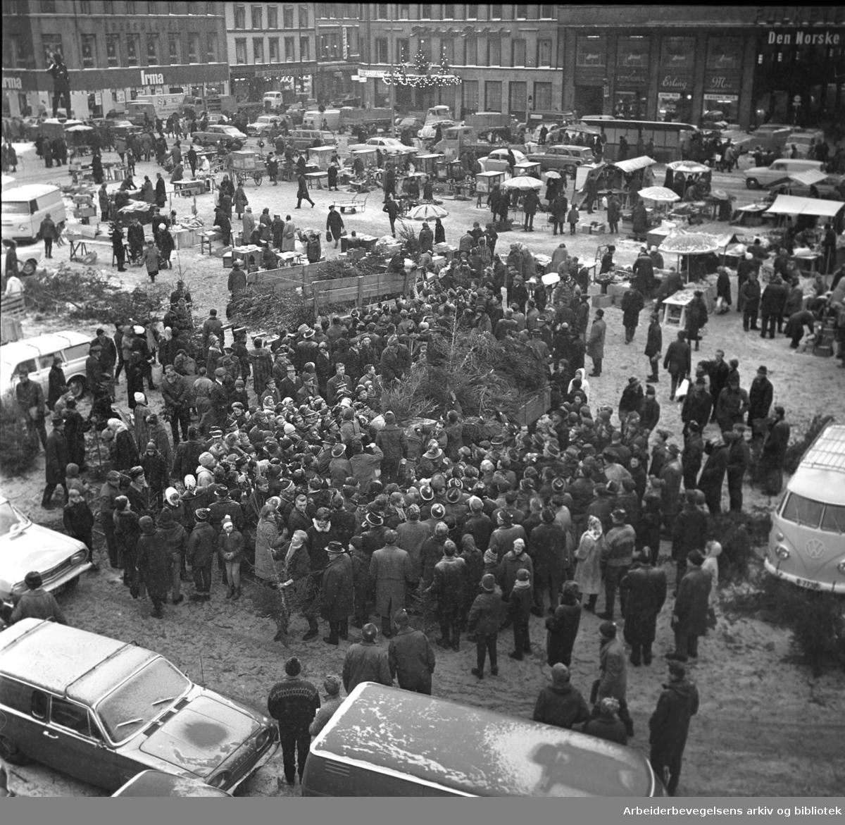 50 kroner for et juletre under panikksalget på Youngstorget, 23. desember 1965.