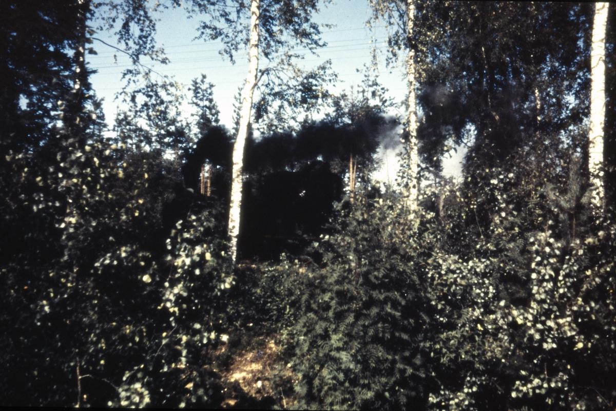 Tog 2058 til Sørumsand i skogen mellom Skulerud og Hemnes.
