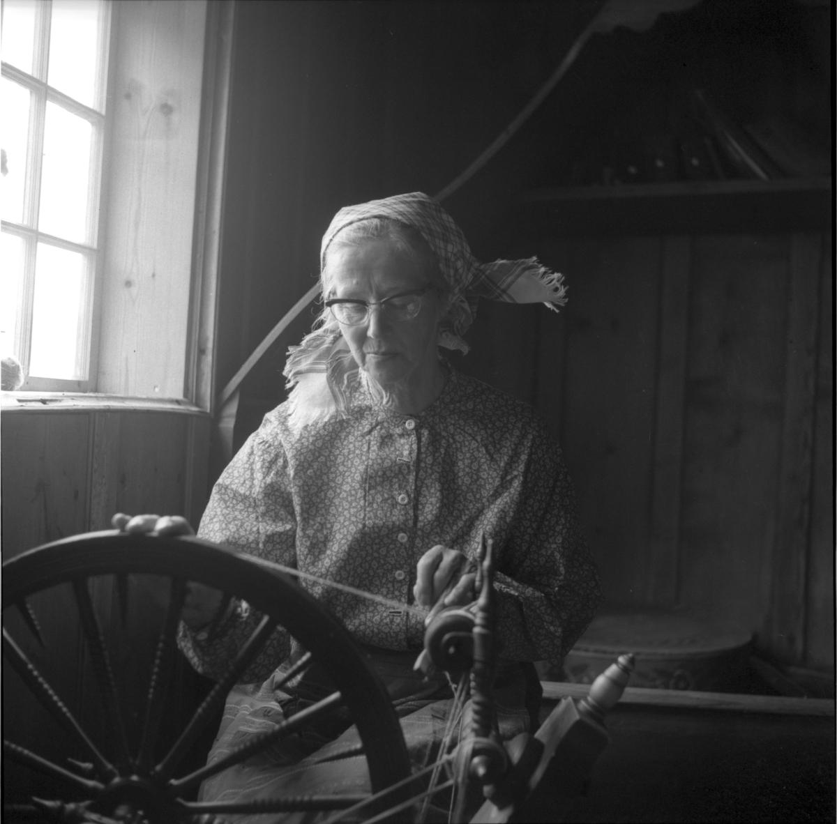 Petrine Løvåsen