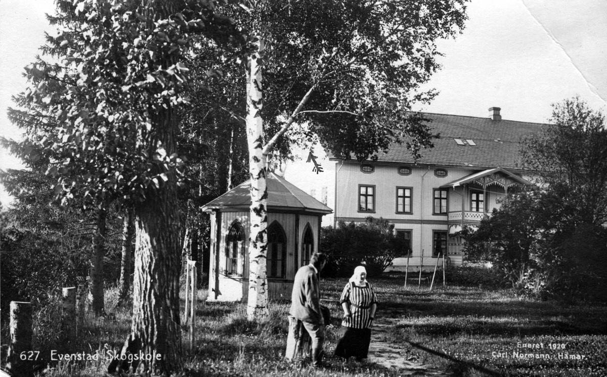 Evenstad Skogskole