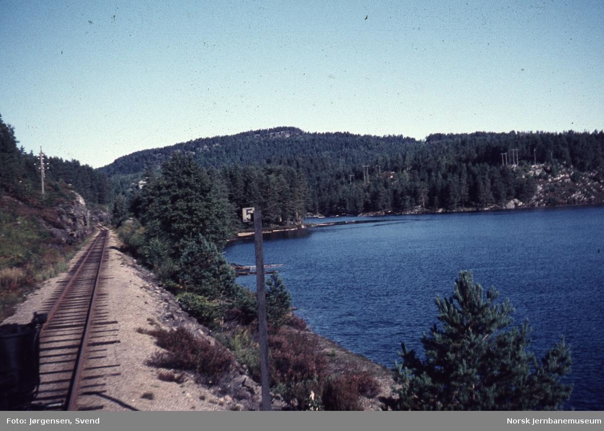 Utsikt fremover fra lokomotivet ved km 358,5 sør for Iveland, sett nordover