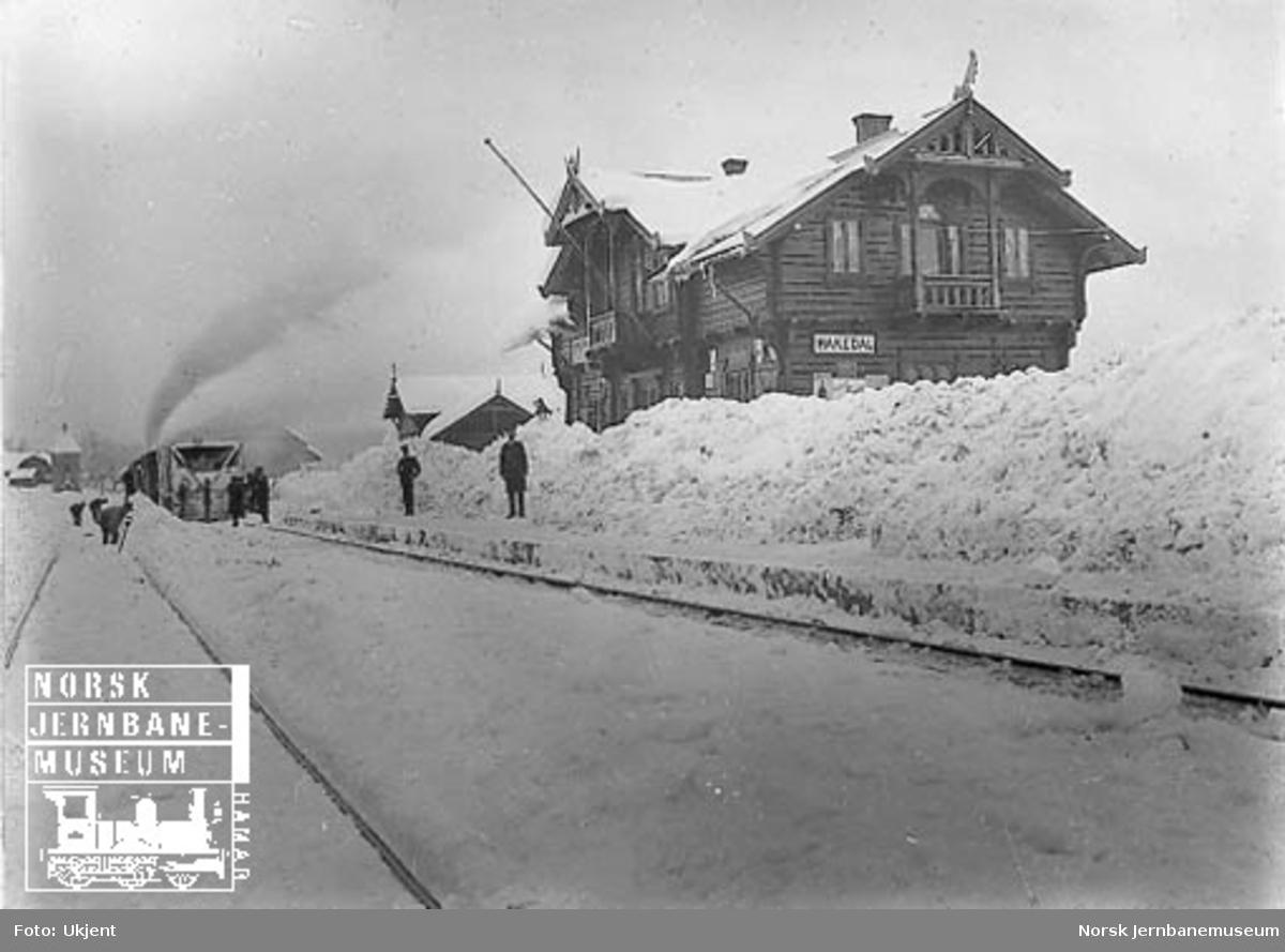 Snøryddingstog på Hakadal stasjon