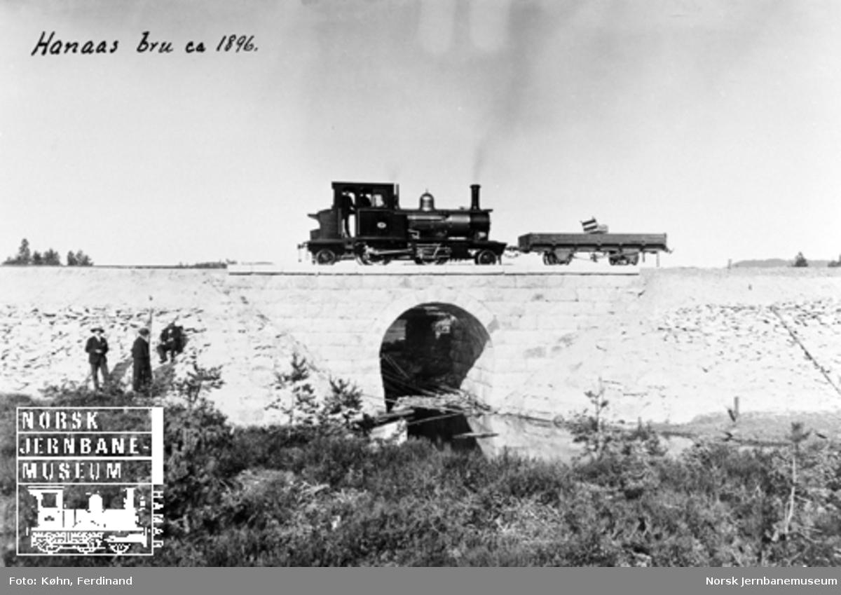 Damplokomotiv nr. 3 med en grusvogn med benk på Hanås bru, trolig ved en befaring