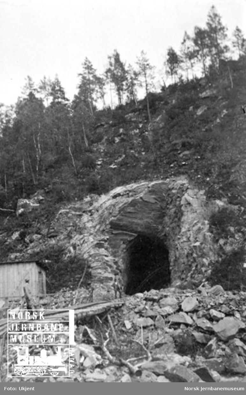 Tunnelanlegg på Bergensbanen