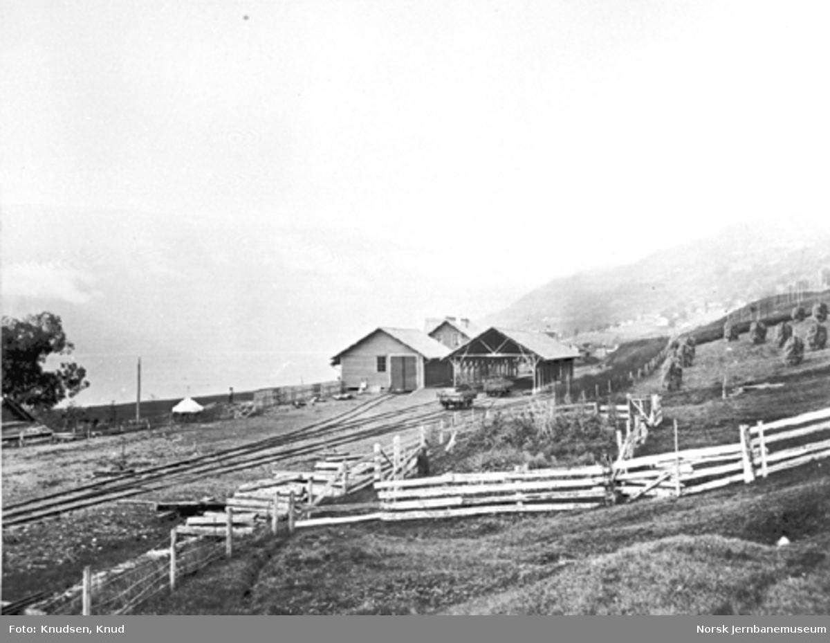 Voss stasjon med godshuset og vognhallen