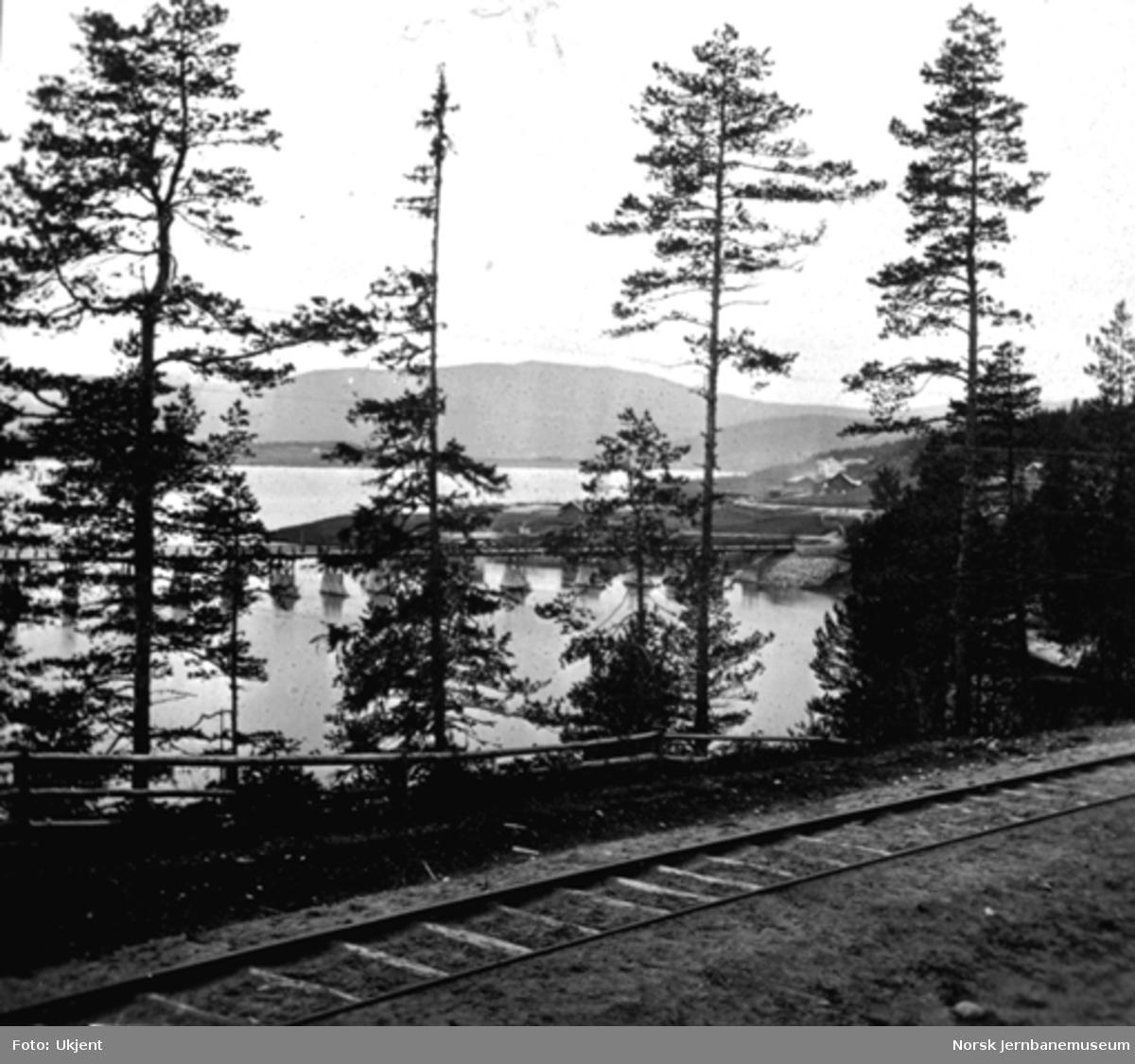 Krøderbanens trase inn mot Krøderen stasjon