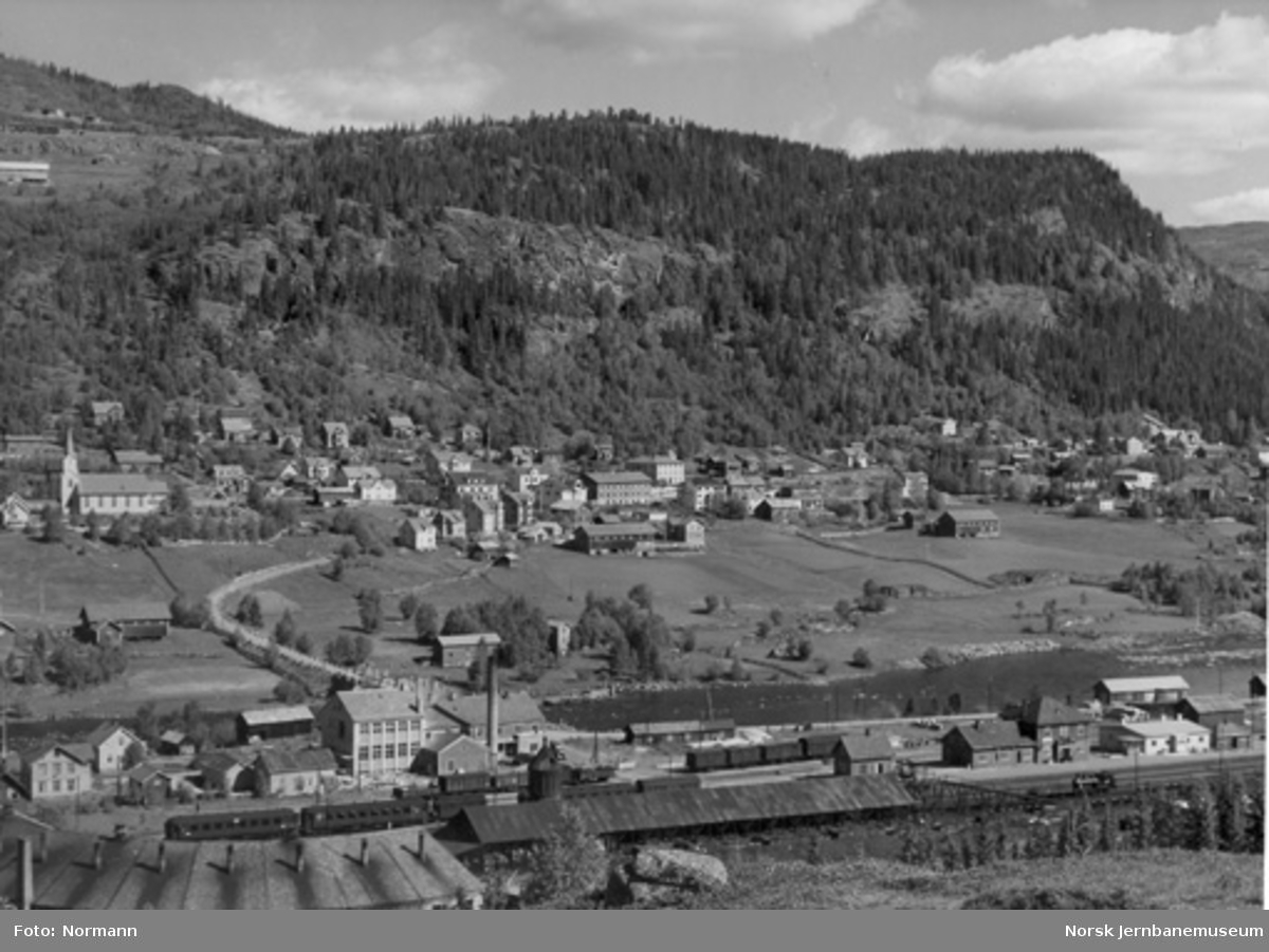 Oversiktsbilde fra Ål med stasjonen i forgrunnen