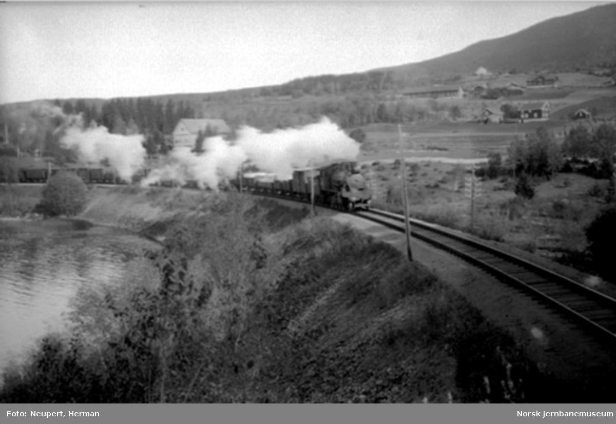 Godstog i Horgenvika sør for Jaren