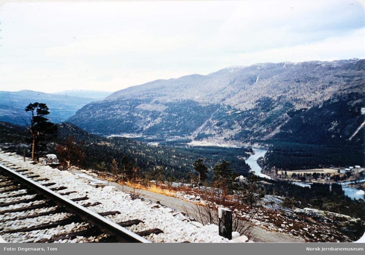 Nordlandsbanen ved Kjemåga