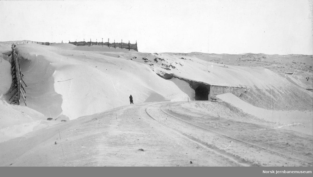 Snøskjermer og overbygg ved Solheim, km 38,7-39